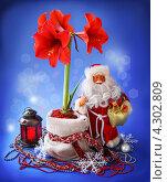 Купить «Новогодний натюрморт с дедом Морозом, цветущим гиппеаструмом и рождественским фонариком», фото № 4302809, снято 15 февраля 2013 г. (c) Олеся Сарычева / Фотобанк Лори