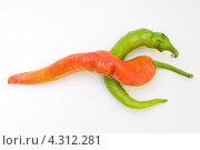 Острый перец. Стоковое фото, фотограф Артем Свистун / Фотобанк Лори
