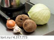 Купить «Ингредиенты для борща», фото № 4317773, снято 8 февраля 2013 г. (c) Сурикова Ирина / Фотобанк Лори