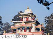 Купить «Крыша буддийского храма. Читинский дацан «Дамба Брайбунлинг»», эксклюзивное фото № 4330753, снято 12 января 2013 г. (c) Александр Щепин / Фотобанк Лори