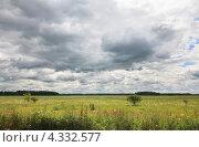 Купить «Кучевые облака над зеленым лугом», фото № 4332577, снято 3 июля 2011 г. (c) Юлия Машкова / Фотобанк Лори