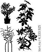 Чёрные силуэты растений на белом фоне. Стоковая иллюстрация, иллюстратор Ольга Алексеева / Фотобанк Лори