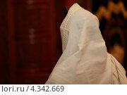 Иудей (2013 год). Редакционное фото, фотограф Сергей Шпаков / Фотобанк Лори