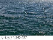 Водная гладь. Стоковое фото, фотограф Виталий Верхозин / Фотобанк Лори
