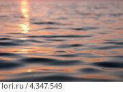 Купить «Поверхность воды. Штиль. Онежское озеро», фото № 4347549, снято 27 июля 2011 г. (c) Охотникова Екатерина *Фототуристы* / Фотобанк Лори
