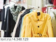 Купить «Женская верхняя одежда висит на вешалке в магазине», фото № 4348129, снято 28 февраля 2012 г. (c) Дмитрий Калиновский / Фотобанк Лори