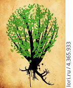 Купить «Дерево на гранжевом фоне», иллюстрация № 4365933 (c) Анна Павлова / Фотобанк Лори