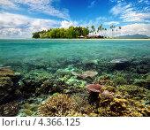 Красивый коралловый пейзаж с островом на горизонте. Стоковое фото, фотограф Soft light / Фотобанк Лори