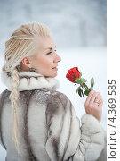 Купить «Привлекательная женщина в шубке с красной розой в зимнем парке», фото № 4369585, снято 22 января 2011 г. (c) Andrejs Pidjass / Фотобанк Лори
