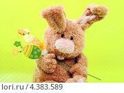 Игрушечный пасхальный кролик и на светло зеленом фоне. Стоковое фото, фотограф CHERKAUSKAS VIKTOR / Фотобанк Лори
