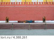 Купить «Москва. Почетный караул у Могилы Неизвестного солдата», эксклюзивное фото № 4388261, снято 9 марта 2013 г. (c) Елена Коромыслова / Фотобанк Лори