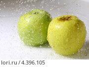 Купить «Два яблока под брызгами воды», фото № 4396105, снято 31 июля 2008 г. (c) Иван Михайлов / Фотобанк Лори