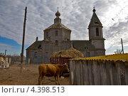 Сельский пейзаж. Стоковое фото, фотограф Кузякин Иван / Фотобанк Лори