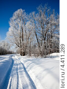 Зима. Стоковое фото, фотограф Владимир Федечкин / Фотобанк Лори