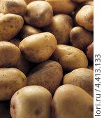 Купить «Неочищенный картофель», фото № 4413133, снято 16 января 2019 г. (c) Food And Drink Photos / Фотобанк Лори