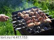 Купить «Приготовление мяса на мангале. Шашлыки», эксклюзивное фото № 4417153, снято 4 июня 2011 г. (c) Яна Королёва / Фотобанк Лори