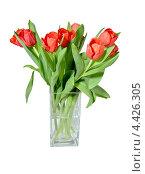 Букет тюльпанов в стеклянной вазе. Изолированно на белом фоне. Стоковое фото, фотограф Илюхина Наталья / Фотобанк Лори
