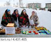 Купить «Город Ялуторовск. Сбор пожертвований на церковную школу», фото № 4431405, снято 17 марта 2013 г. (c) Александр Тараканов / Фотобанк Лори