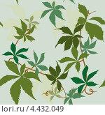 Бесшовная текстура с виноградными листьями. Стоковая иллюстрация, иллюстратор Александра Шкиндерова / Фотобанк Лори
