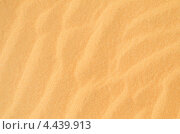 Купить «Желтый песок», фото № 4439913, снято 2 марта 2013 г. (c) Александр Подшивалов / Фотобанк Лори