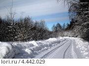 Дорога по снегу сквозь лес. Стоковое фото, фотограф Анастасия Новикова / Фотобанк Лори