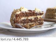 Кусок домашнего торта. Стоковое фото, фотограф Лидия Шляховская (Lidia Sleahovscaia) / Фотобанк Лори
