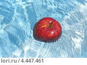 Красное яблоко, упавшее в воду. Стоковое фото, фотограф Сергей Аряев / Фотобанк Лори
