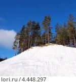 Купить «Сосны на заснеженном холме на фоне синего неба», фото № 4448297, снято 9 марта 2013 г. (c) Алексей Кокоулин / Фотобанк Лори