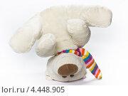 Игрушечный медведь. Стоковое фото, фотограф денис рожко / Фотобанк Лори