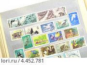 Коллекция марок в альбоме. Стоковое фото, фотограф Яна Королёва / Фотобанк Лори