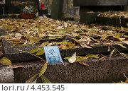 Иконка Богородицы на могиле. Стоковое фото, фотограф Яна Шпакова / Фотобанк Лори