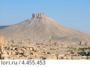 Купить «Руины древнего города Пальмира на фоне средневековой крепости Qala'at Ibn Maan, Сирия», фото № 4455453, снято 2 июля 2008 г. (c) Некрасов Андрей / Фотобанк Лори