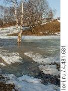 Купить «Ранняя весна в парке», фото № 4481681, снято 28 марта 2010 г. (c) Горшков Игорь / Фотобанк Лори