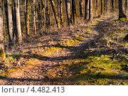 Курорт Горячий ключ - горная тропа к скале Петушок. Стоковое фото, фотограф ValeriyK / Фотобанк Лори