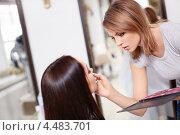 Купить «Визажист наносит макияж», фото № 4483701, снято 3 февраля 2013 г. (c) Raev Denis / Фотобанк Лори