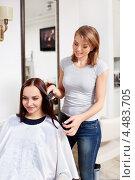 Купить «Симпатичная женщина в парикмахерской», фото № 4483705, снято 3 февраля 2013 г. (c) Raev Denis / Фотобанк Лори