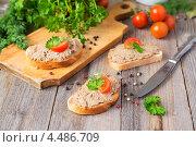 Купить «Бутерброды с домашним паштетом», фото № 4486709, снято 7 апреля 2013 г. (c) Марина Славина / Фотобанк Лори