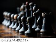 Деревянные шахматы, черные фигуры. Стоковое фото, фотограф Георгий Курятов / Фотобанк Лори