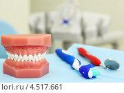 Купить «Искусственная челюсть и стоматологические инструменты», фото № 4517661, снято 25 июня 2011 г. (c) Losevsky Pavel / Фотобанк Лори
