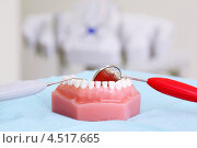 Купить «Искусственная челюсть и стоматологические инструменты», фото № 4517665, снято 25 июня 2011 г. (c) Losevsky Pavel / Фотобанк Лори