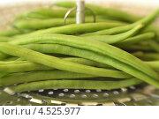 Купить «Стручки зеленой фасоли», фото № 4525977, снято 12 августа 2012 г. (c) Food And Drink Photos / Фотобанк Лори