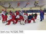Купить «Открытая ледовая тренировка юниорской, до 18 лет, сборной России по хоккею», фото № 4526785, снято 12 апреля 2013 г. (c) Stockphoto / Фотобанк Лори