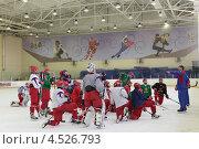 Купить «Открытая ледовая тренировка юниорской, до 18 лет, сборной России по хоккею», фото № 4526793, снято 12 апреля 2013 г. (c) Stockphoto / Фотобанк Лори