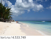 Купить «Доминикана. Тропический пляж», эксклюзивное фото № 4533749, снято 6 апреля 2012 г. (c) Юрий Морозов / Фотобанк Лори
