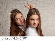 Купить «Сестры-близнецы», фото № 4546901, снято 23 февраля 2013 г. (c) Gagara / Фотобанк Лори