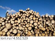 Купить «Сосновые бревна», эксклюзивное фото № 4552529, снято 21 апреля 2013 г. (c) Елена Коромыслова / Фотобанк Лори