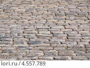 Купить «Мостовая из булыжника», эксклюзивное фото № 4557789, снято 23 апреля 2013 г. (c) Алёшина Оксана / Фотобанк Лори