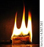 Языки пламени. Стоковое фото, фотограф Кульпина Евгения / Фотобанк Лори