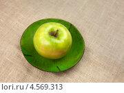 Купить «Зелёное яблоко на тарелке на столе», фото № 4569313, снято 20 января 2013 г. (c) Eve Voevoda / Фотобанк Лори