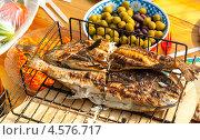 Купить «Пикник — жареная рыба, оливки, овощи», эксклюзивное фото № 4576717, снято 9 мая 2010 г. (c) Давид Мзареулян / Фотобанк Лори